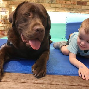 Animal-assisted therapy for children